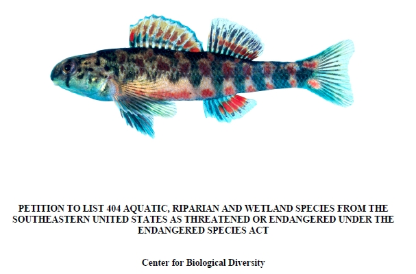 5 of us freshwater fish species petitioned for endangered for Endangered fish species