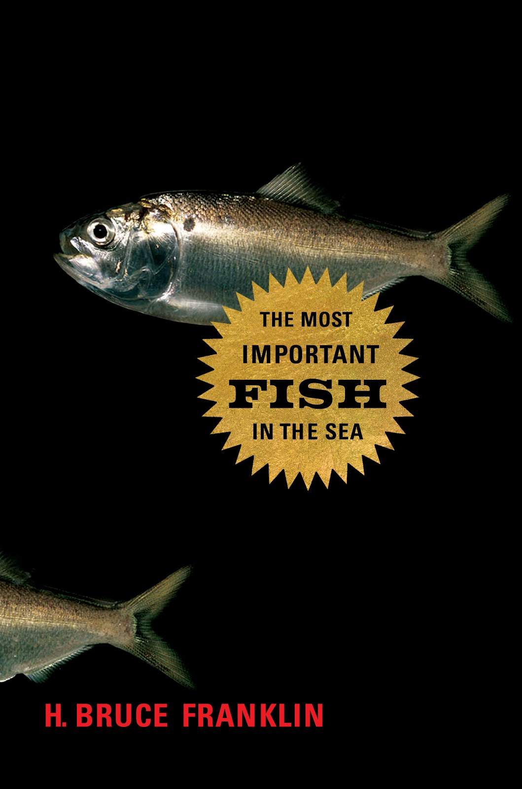 Why are there fish in my peanut butter the fisheries blog for More fish in the sea