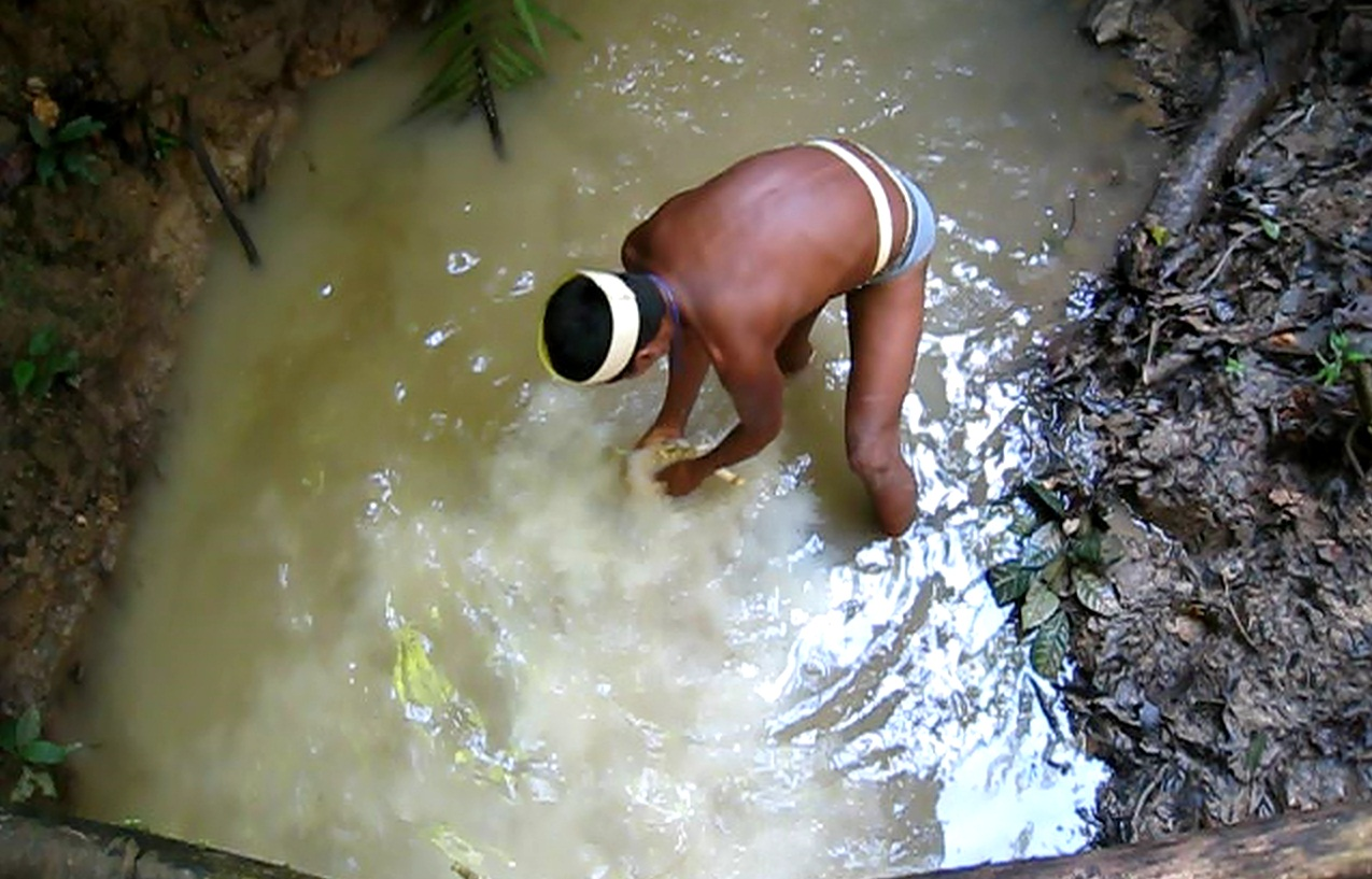 Freshwater fish killers -