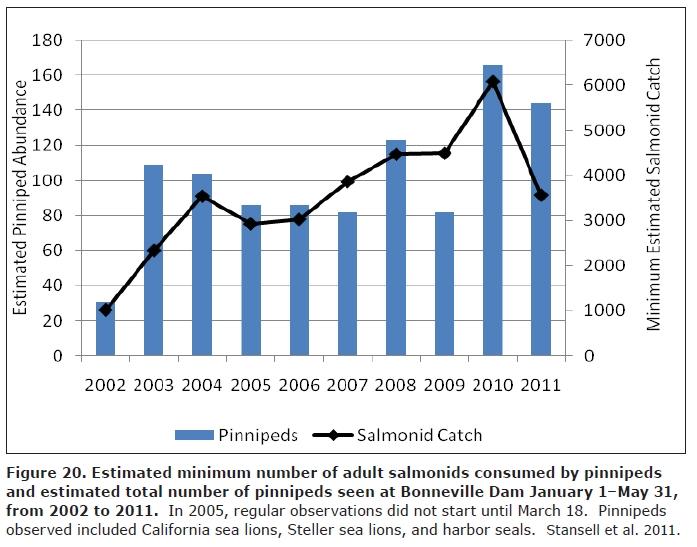 Sea Lion Salmon Graph