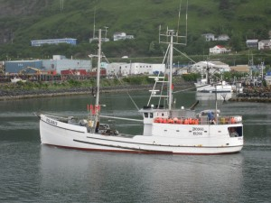 A classic halibut schooner; the IPHC has been managing the halibut fishery since 1923. Photo credit: Dave Jackson.