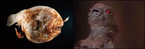Anglerfish Alien Baby