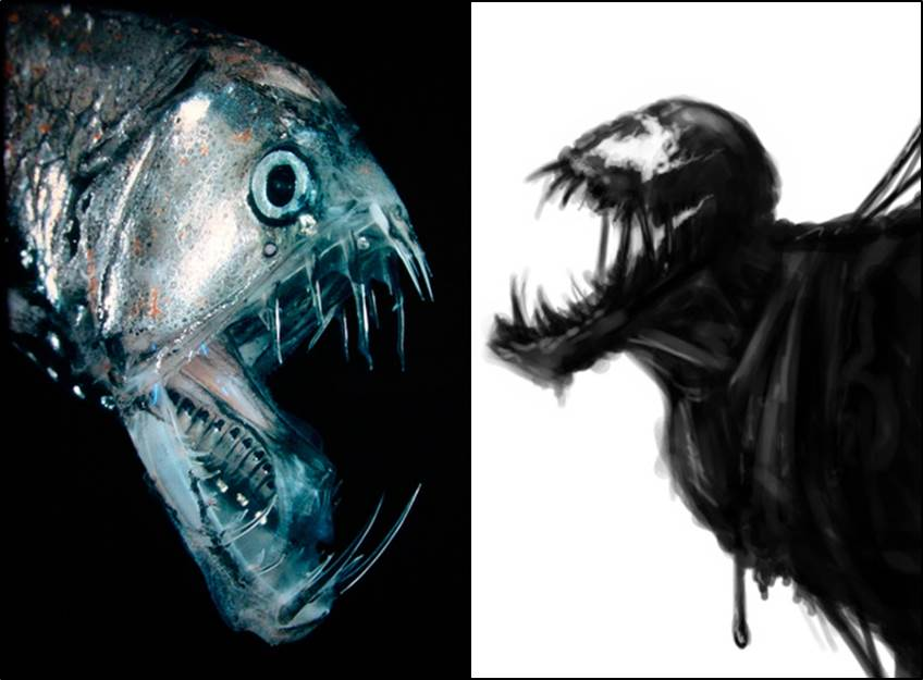 Bilderesultat for marianas trench ocean creatures
