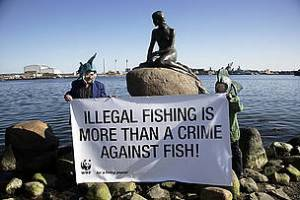 Illegal fishing is easy to protest.  But, what about unregulated fishing? (WWF)