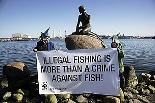 Illegal fishing is easy to protest (WWF).  But, what about unregulated fishing?