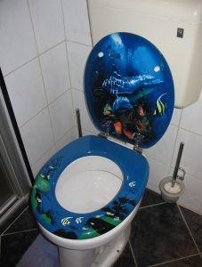 Think a shark is scary?  How about this toilet?