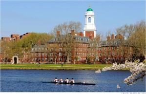 Getting into one of the most prestigious schools in the world looks pretty common compared to a shark attack (shutterstock).