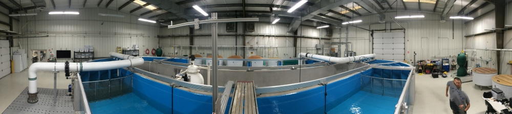 30,000 gallon high-velocity flume operated by the US Army Corps of Engineers (Source: Steve Midway)