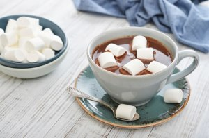 Would you like to top your hot coco with fish gelatin? (chabad.org)
