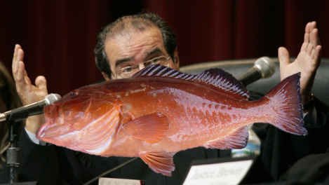 "Are fish ""tangible objects""? To you, the answer to the above question may seem simple. However, as you are about to find out, the answer to this question was an incredibly complicated issue for a Florida fisherman and the seven Supreme Court Justices."