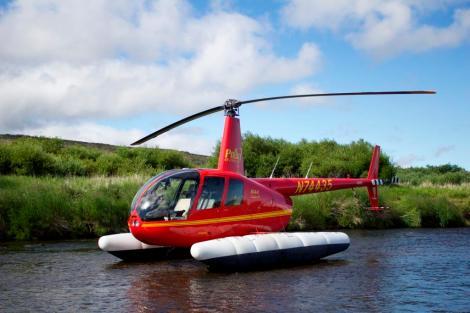 Fish Helicopter Sampling