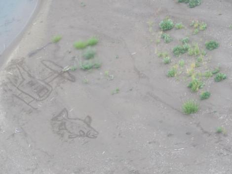 Salmon Sand Art