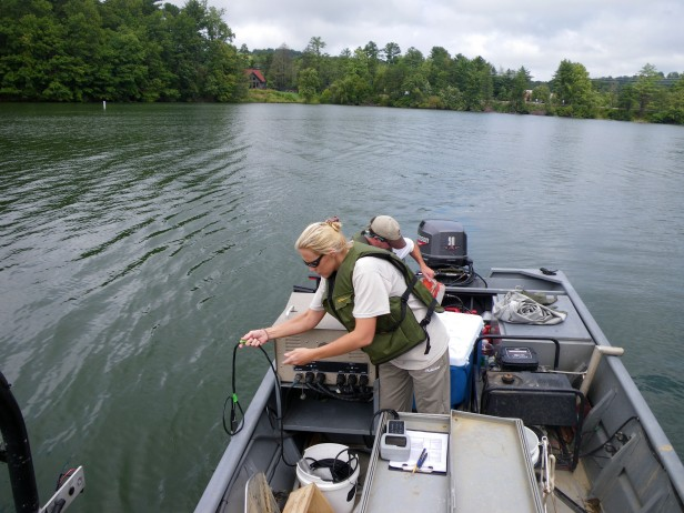 water quality on lake julian