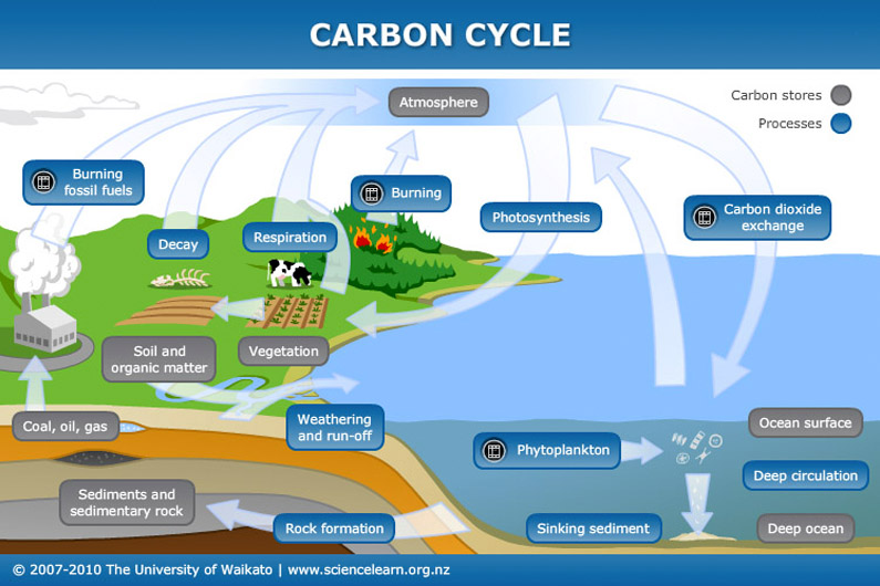 Carbon-cycle20160930-22732-cmhfg2