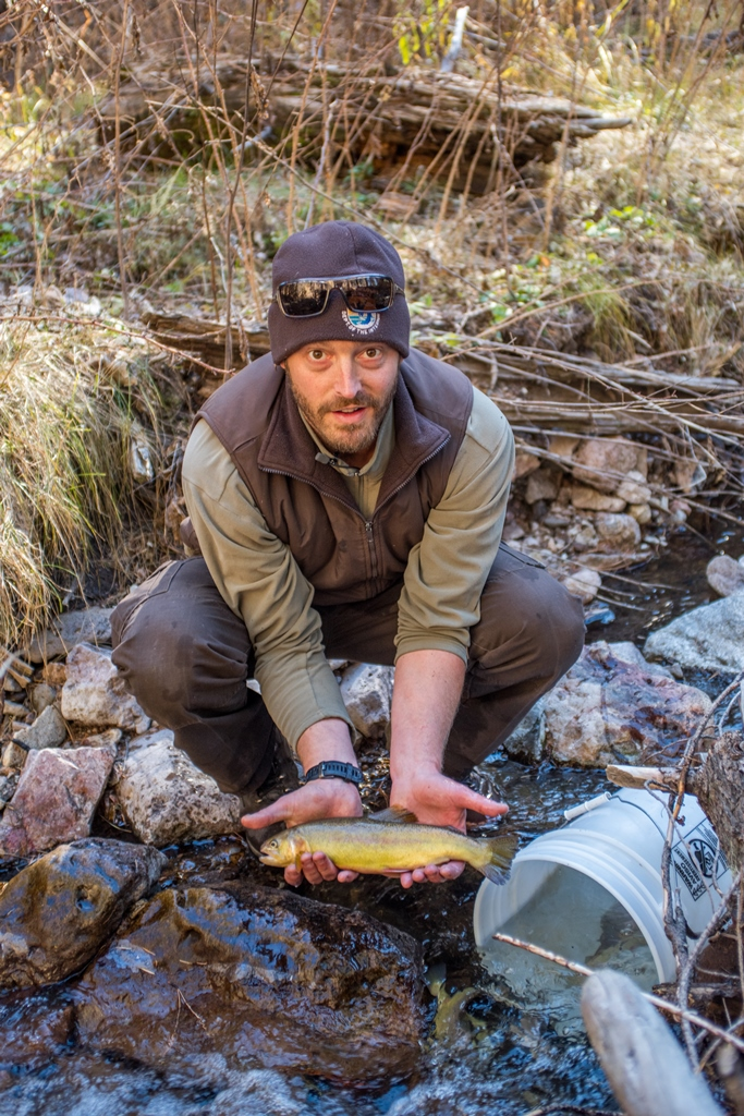 Andy Dean New Mexico Fish and Wildlife Conservation Office holds a Gila trout Mineral Creek photo Craig Springer USFWS resized.jpg