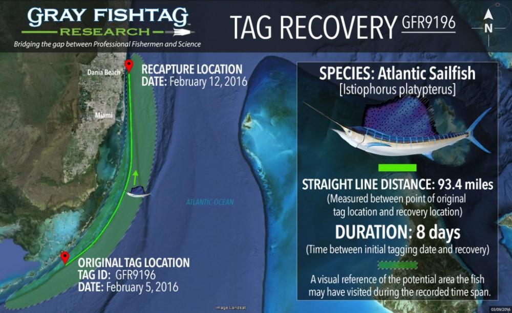 GFR9196-Atlantic-Sailfish-Recovery-1024x627
