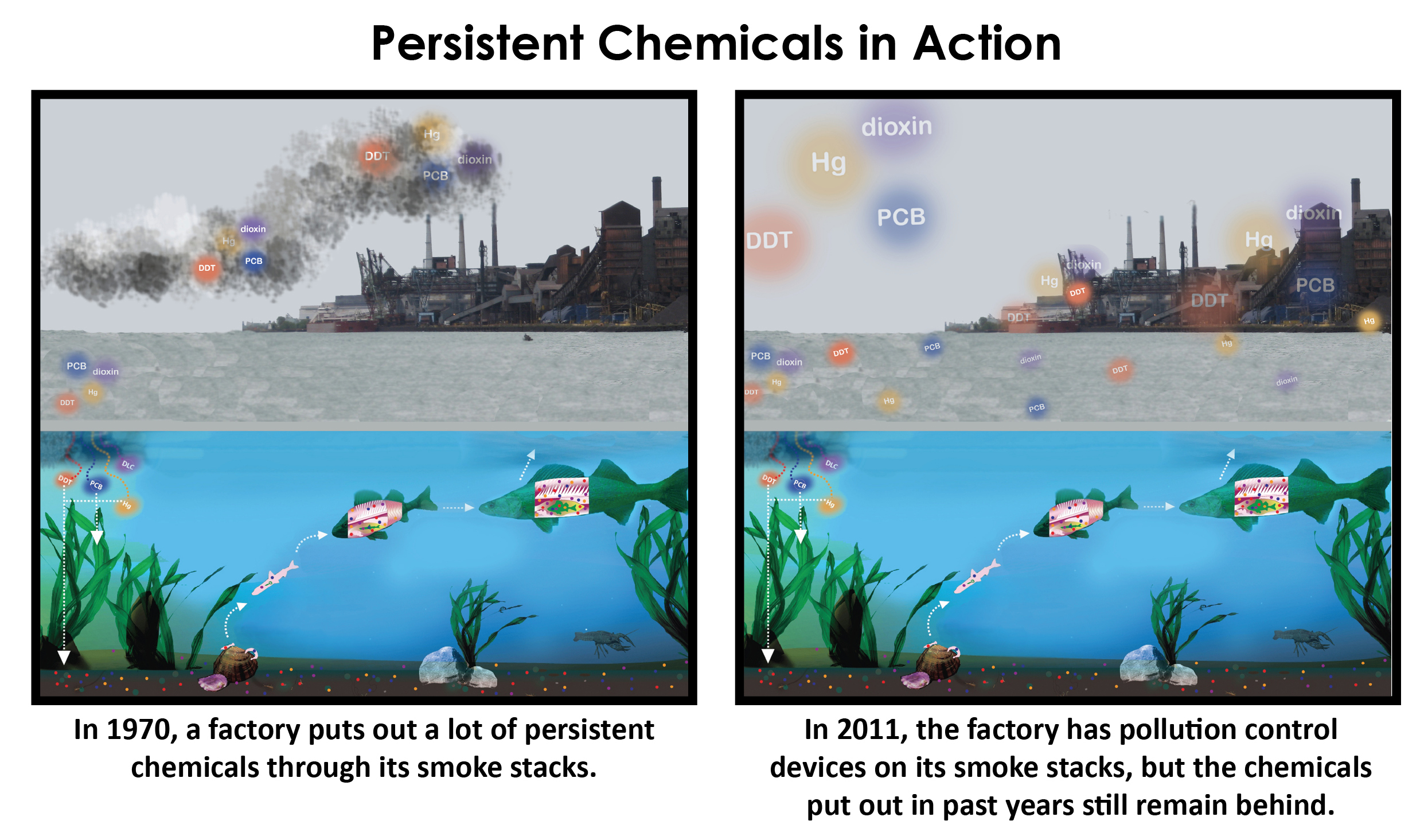 PERSISTENT_CHEMICALS_IN_ACTION_354013_7