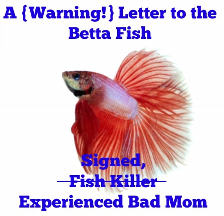 bettafishletter1
