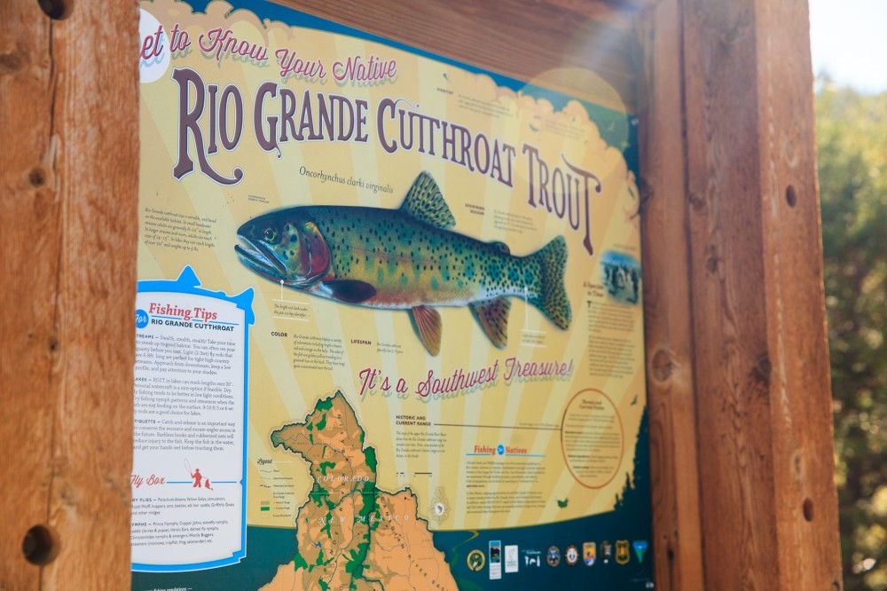 Rio Grande Cutthroat Trout Sign